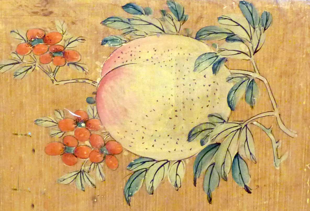 4ds014 detail of peach.jpg