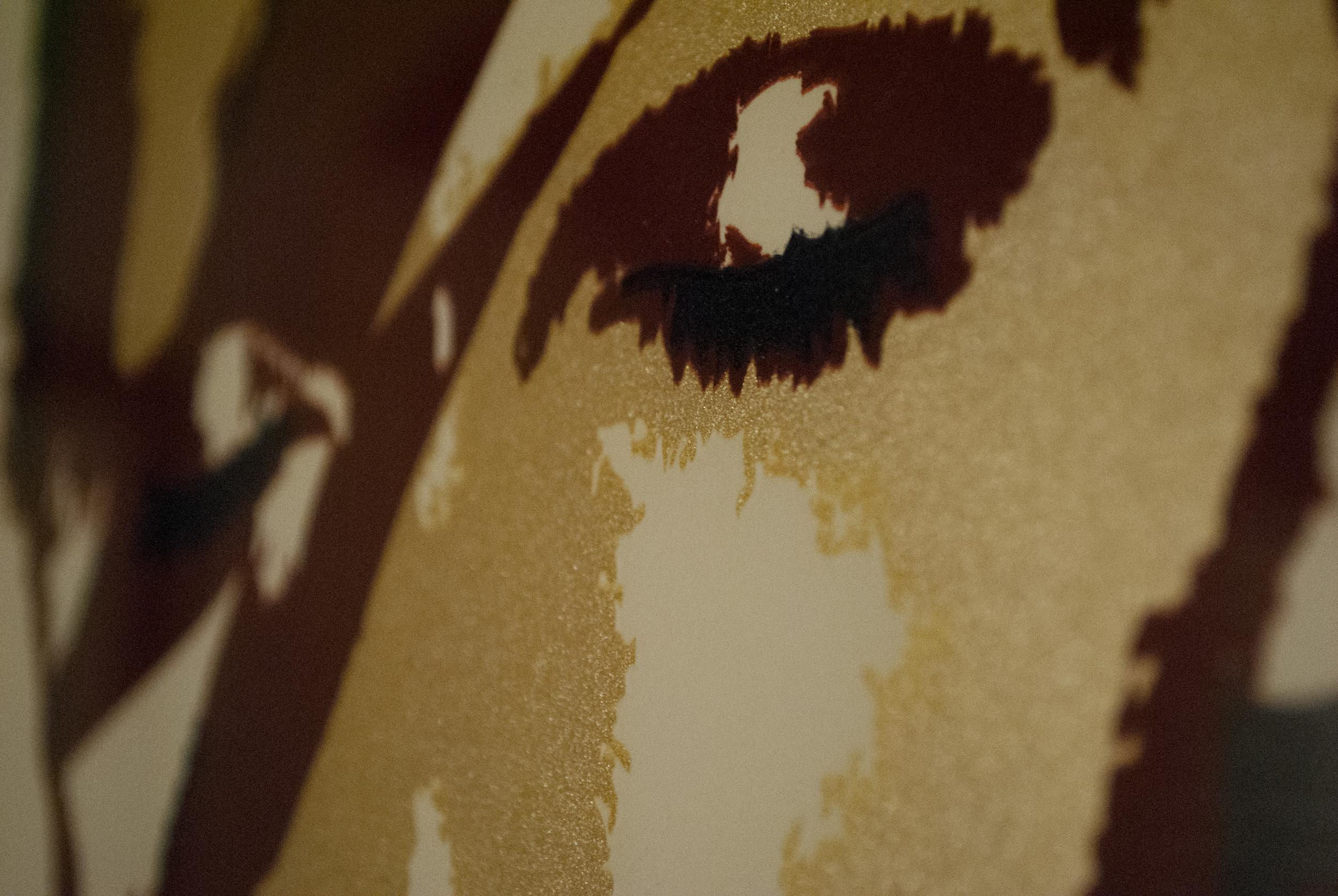 """Bowie Print"" Detail"