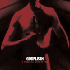 Godflesh - A World Lit Only By Fire.jpeg