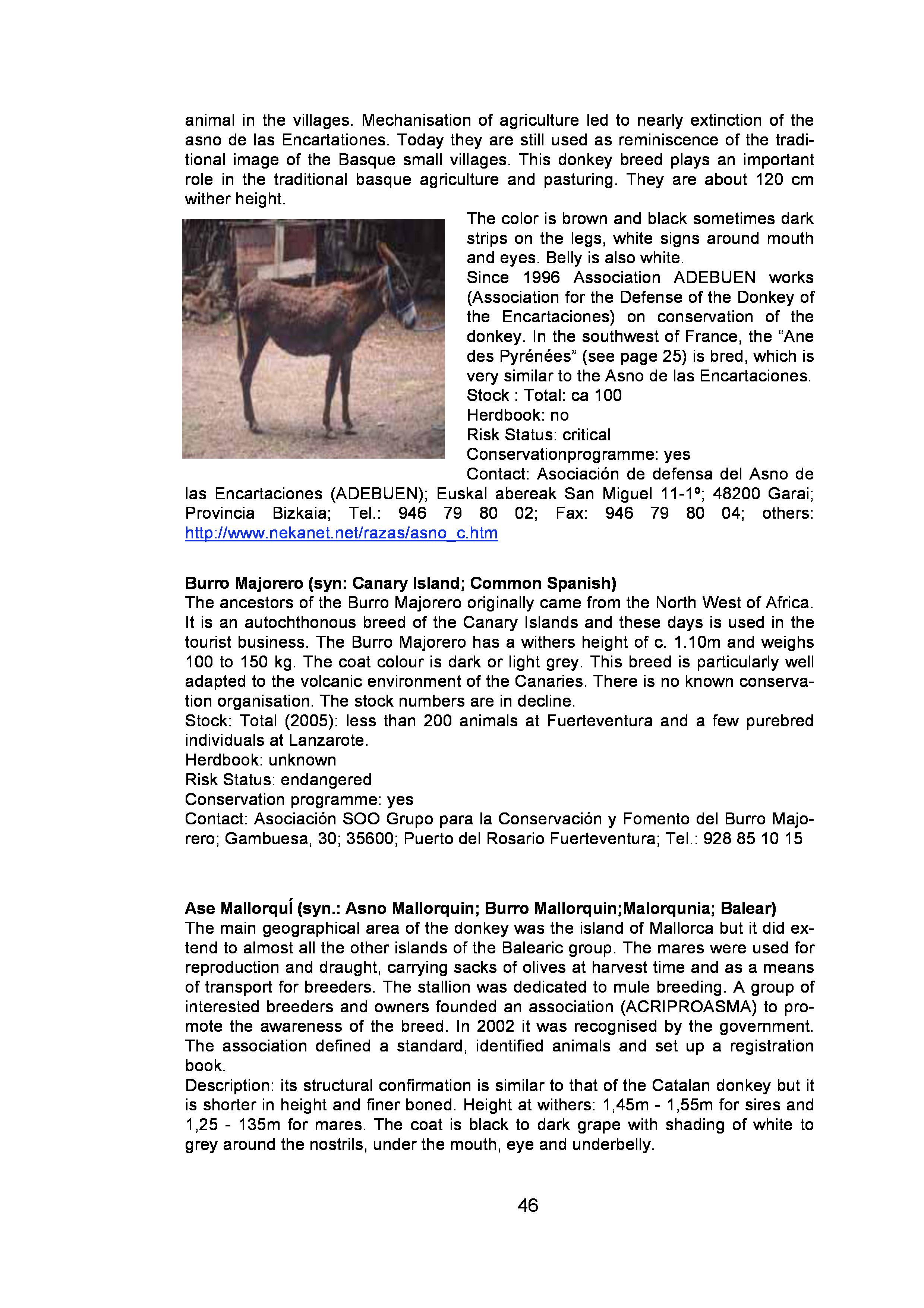 page-45.jpg