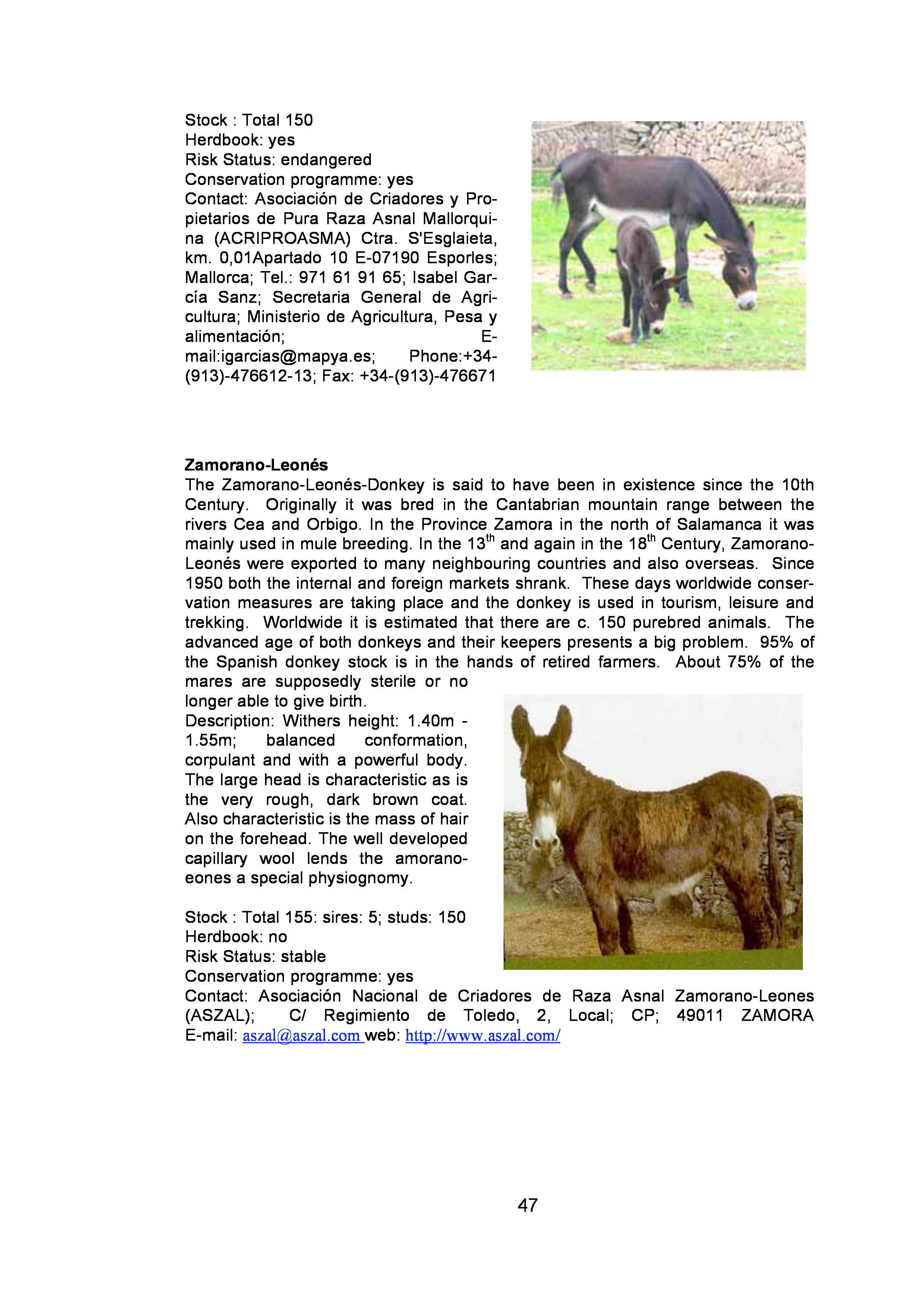 page-46.jpg