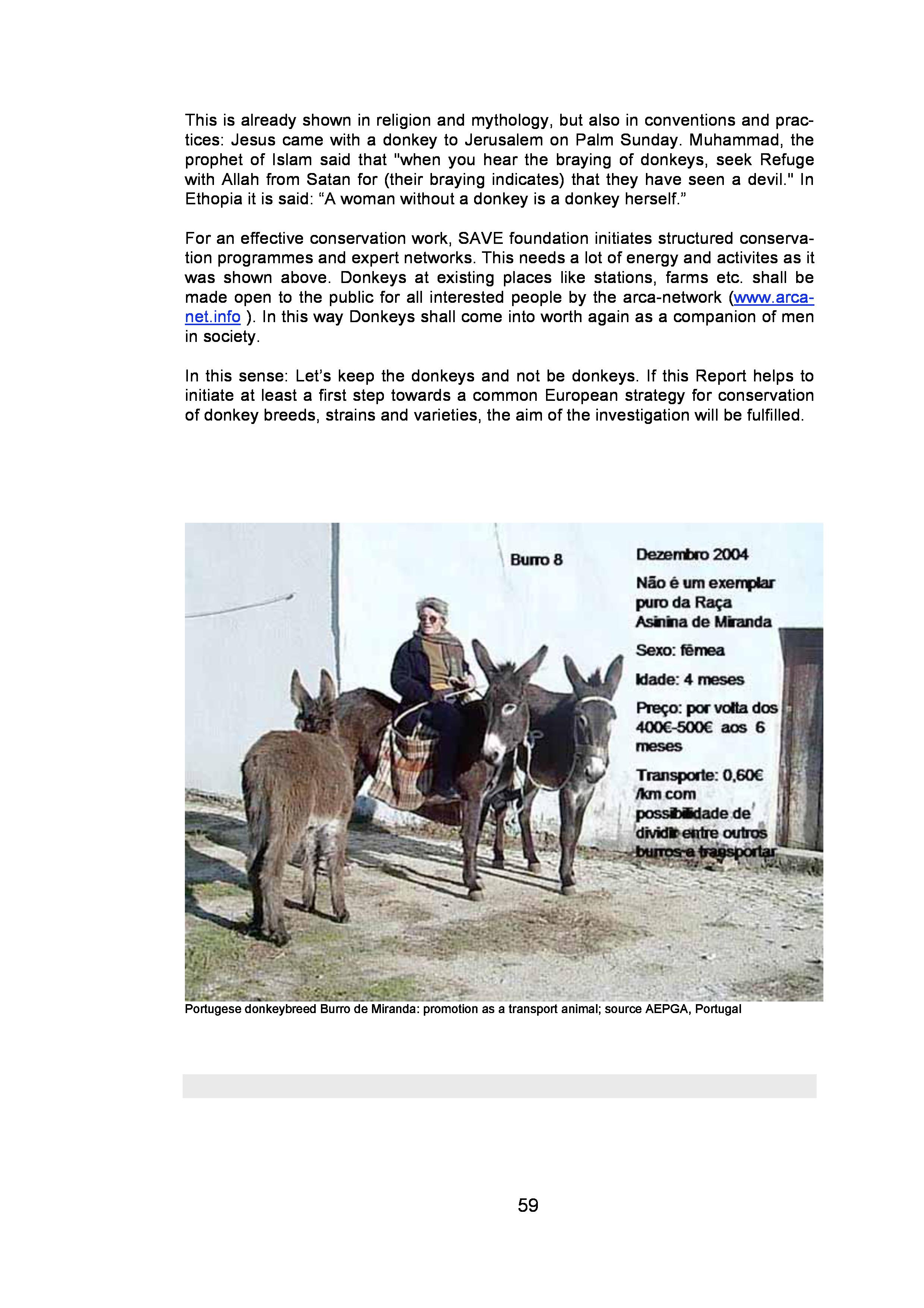 page-58.jpg
