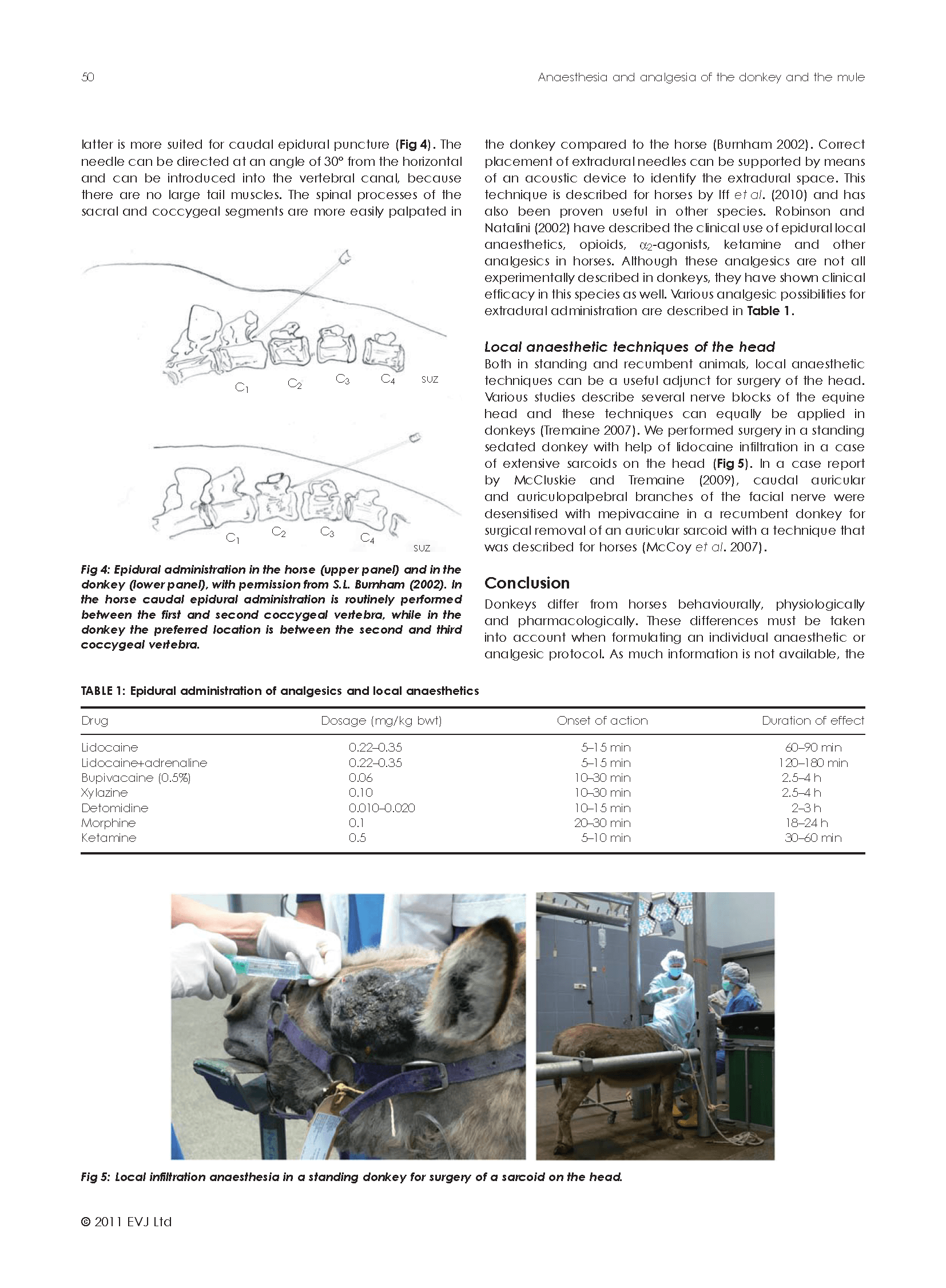 eve312_Page_4.png