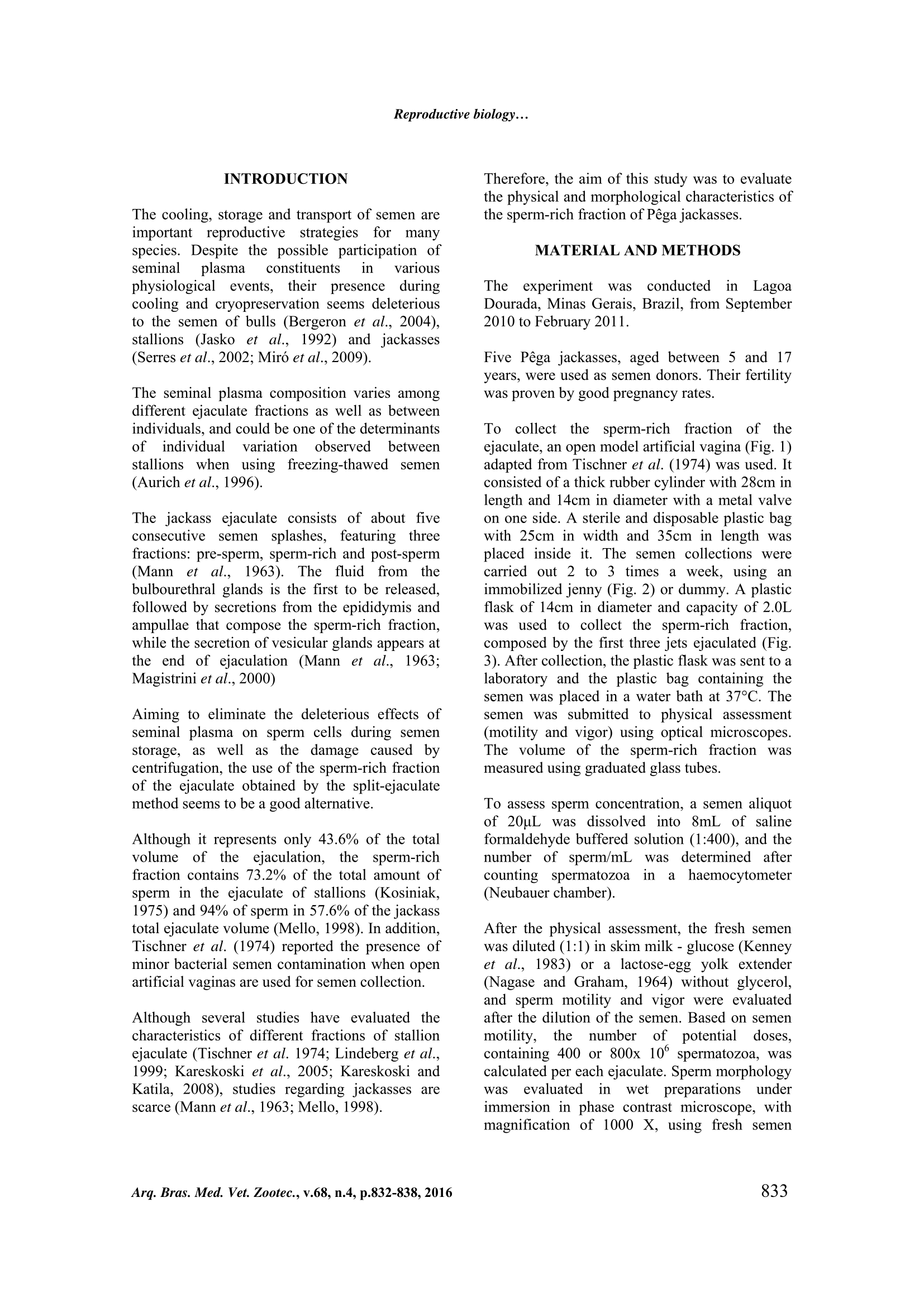 AMA 1-2 (1).png
