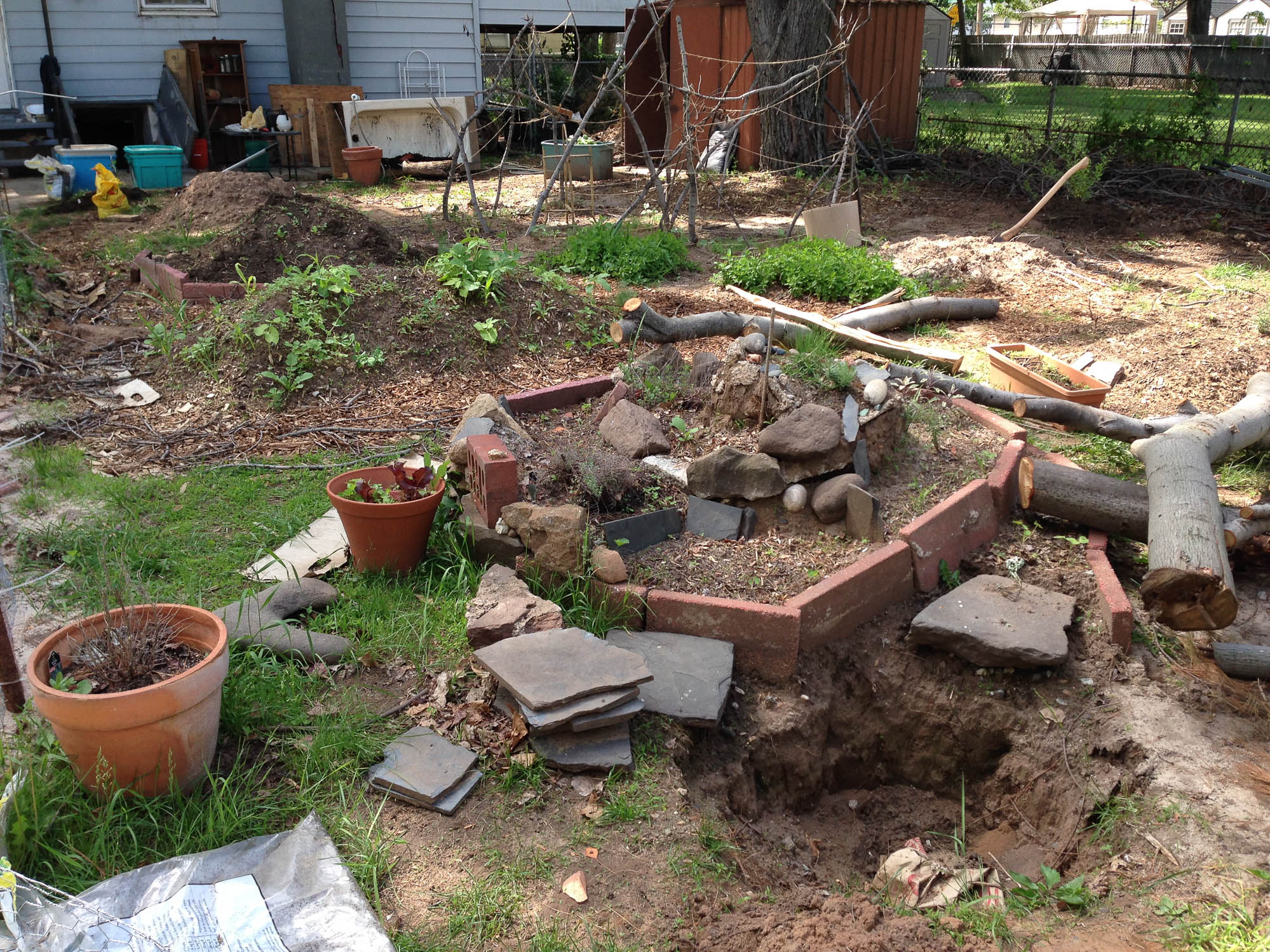 By the end of May there are sprouts in all the beds.  Jon begins his pond project.