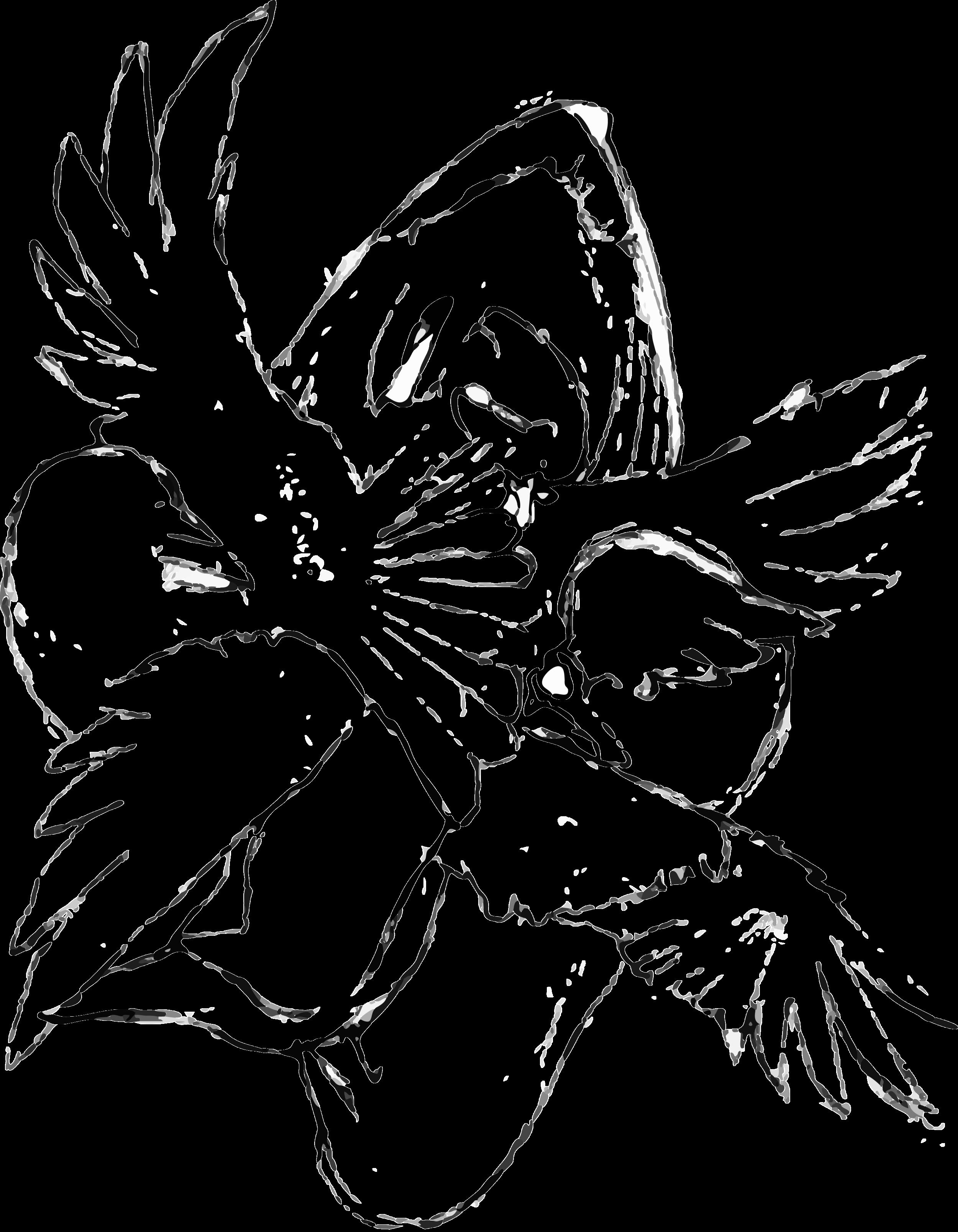 dumbbird bird vector.png
