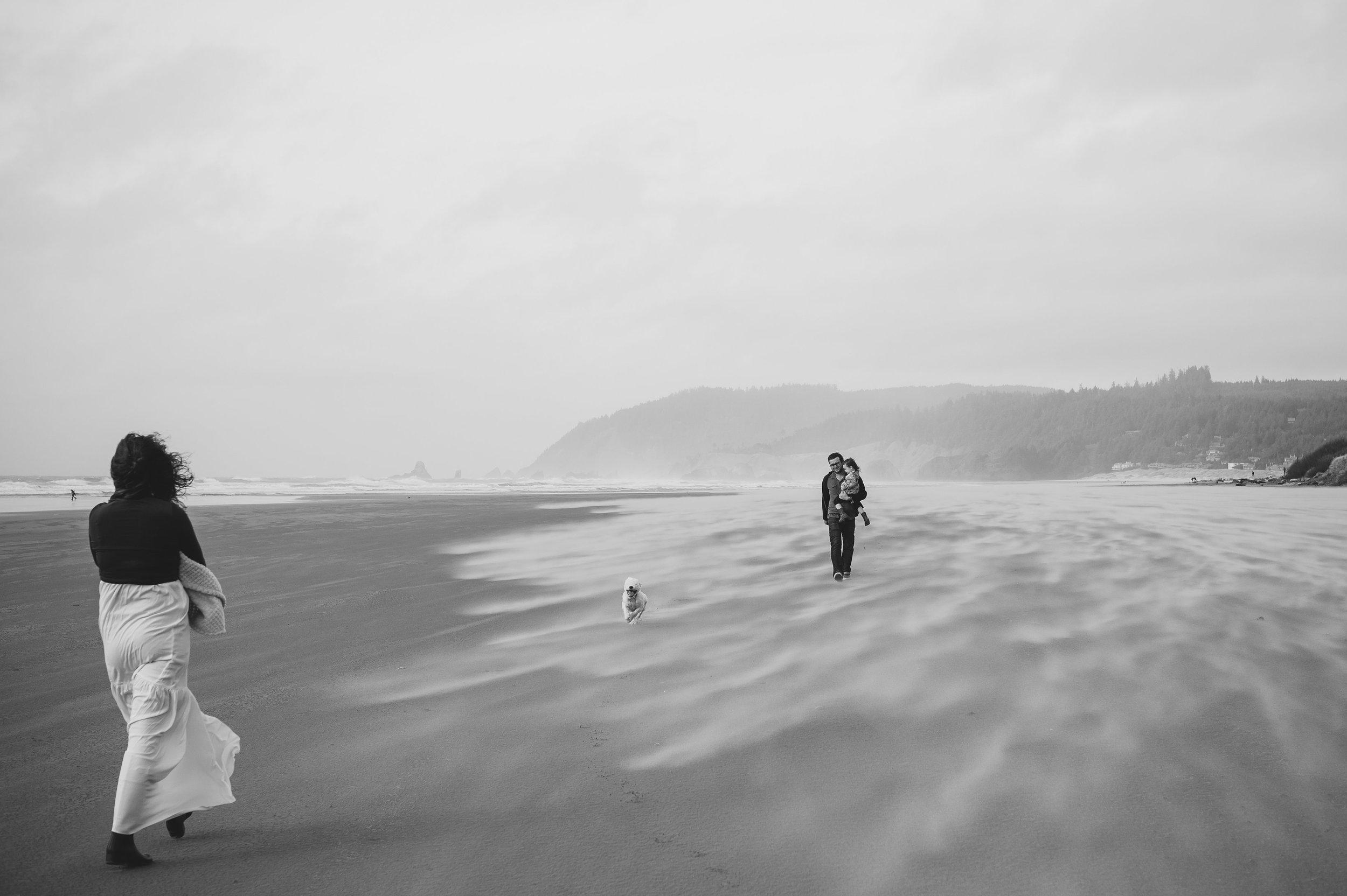 weaver©brianamoore-20.jpg