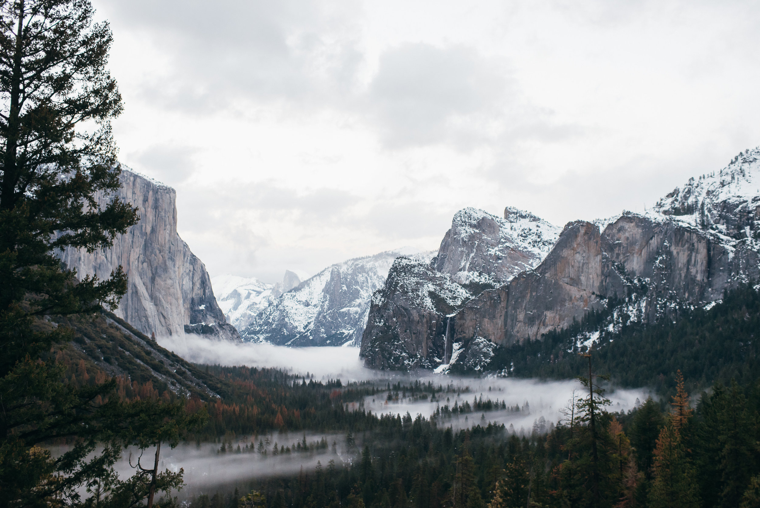 YosemiteAlexaBrandon©brianamoore-179.jpg