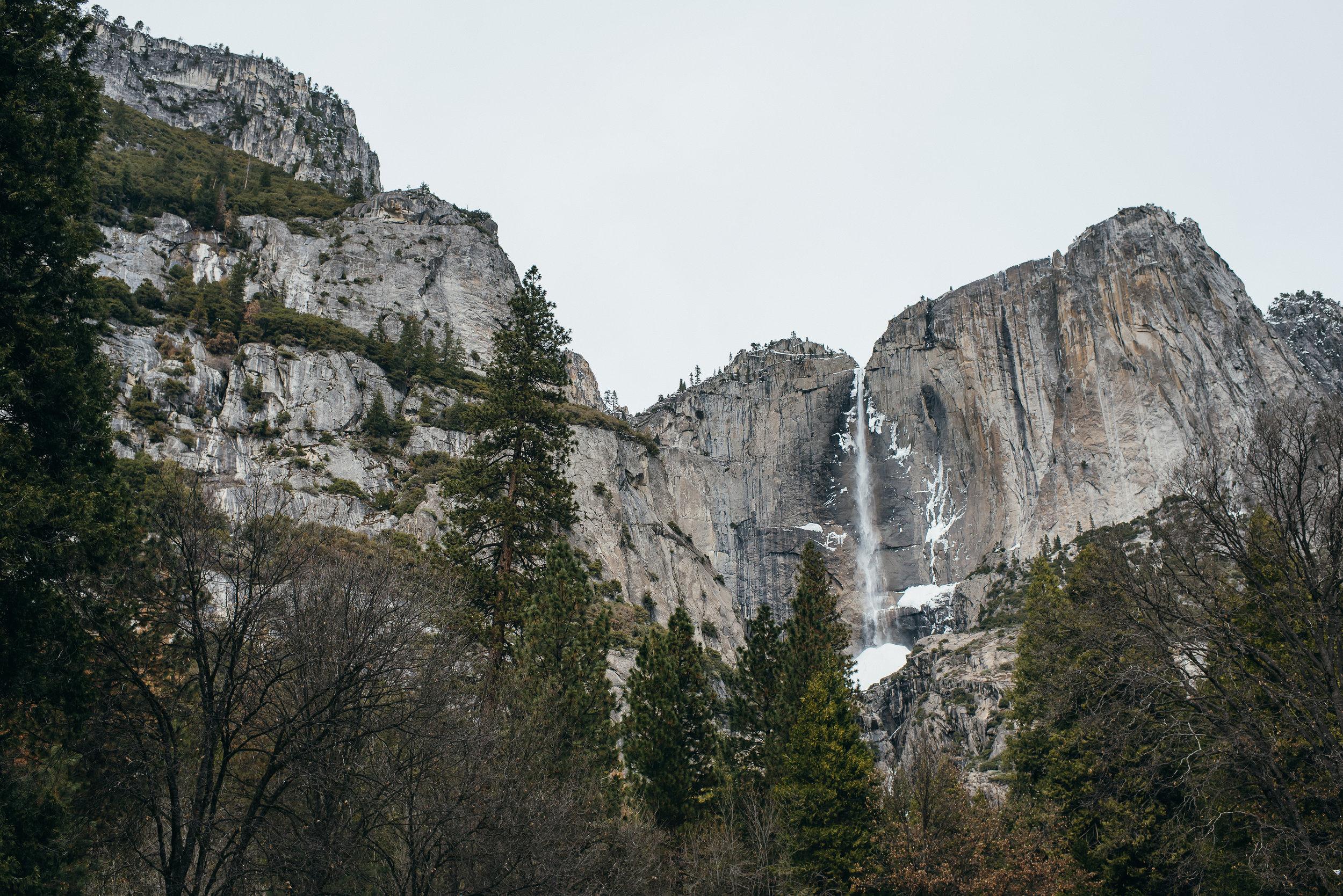 YosemiteAlexaBrandon©brianamoore-203.jpg