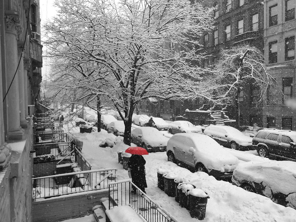 3/5/15 Snow Day NYC