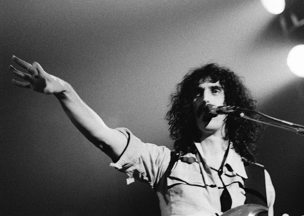 Zappa2©ChesherCat.jpg
