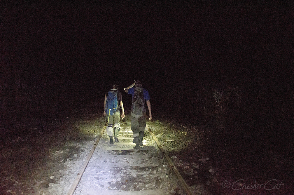 Chesher_Catacomb1_Tracks_7549.jpg