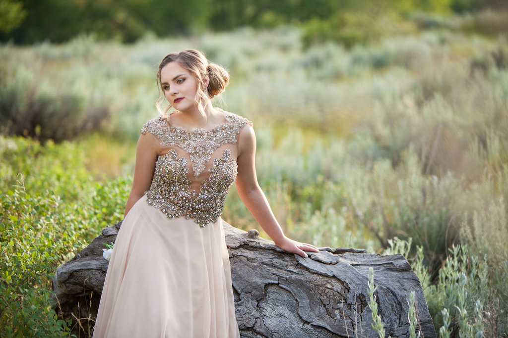 Chasing Autumn Photography - Medicine Hat Photography