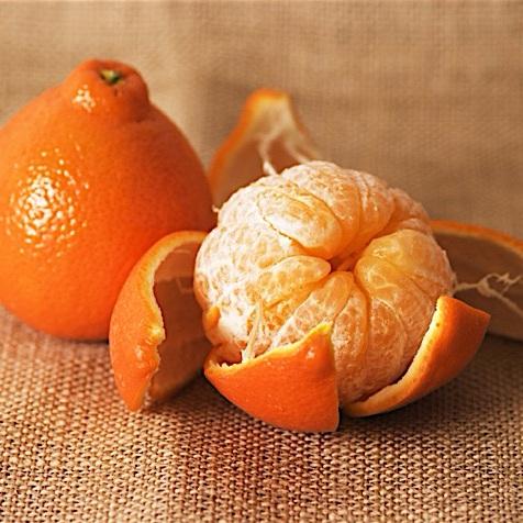 Tangerines & Tangelos