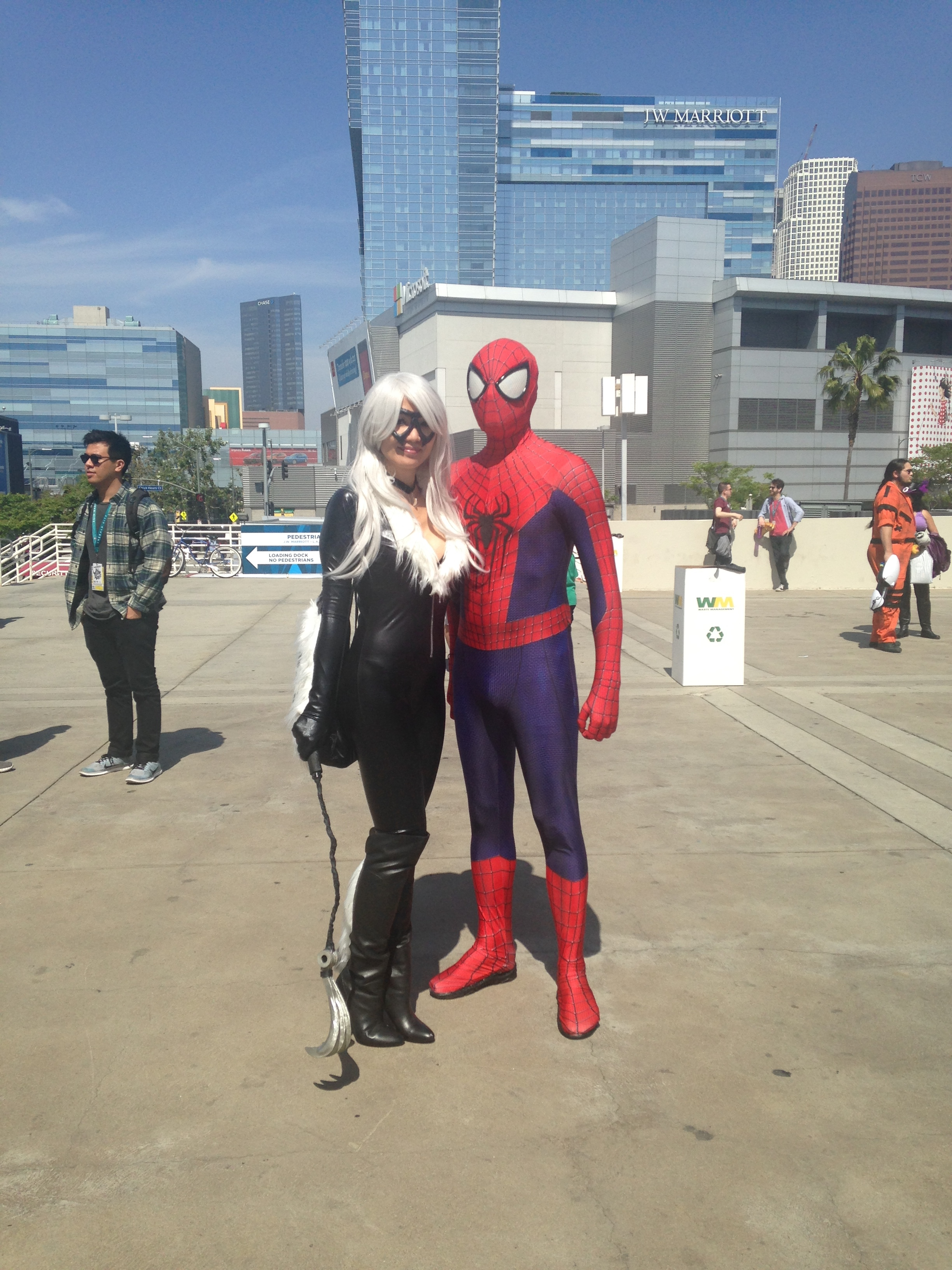 Black Cat and Spiderman Cosplay