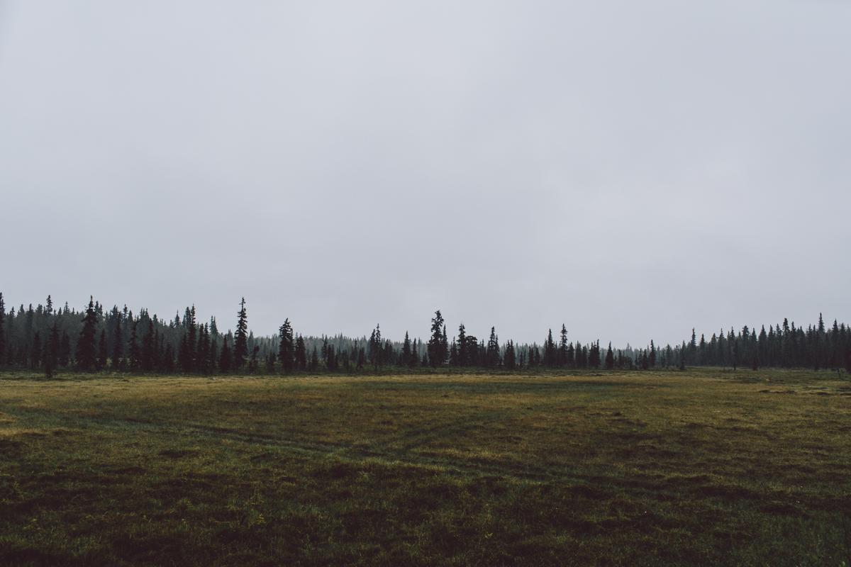 jess-hunter-photography-alaska-wedding-photographer-anchorage-elopement-168.jpg