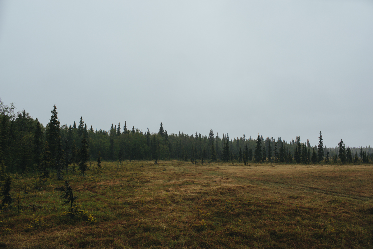 jess-hunter-photography-alaska-wedding-photographer-anchorage-elopement-169.jpg