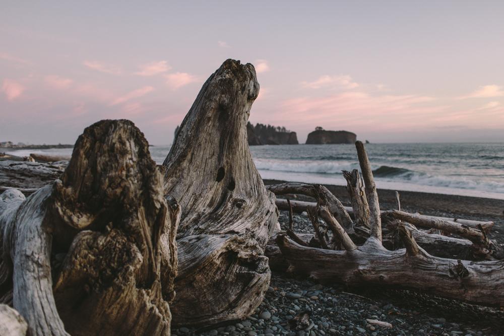 jess-hunter-photography-rialto-beach-washington-portraits-seattle-artistic-portraits-5135.jpg