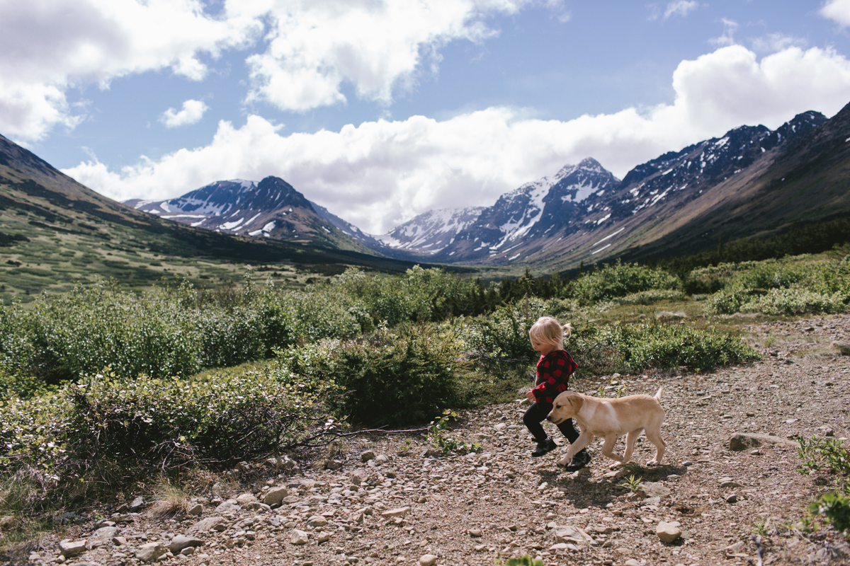 Photo by Jess Hunter, Anchorage Alaska wedding & elopement photographer, Chugach mountain range, Anchorage mountain portrait sesssion, adventure photography, elopement locations in Alaska
