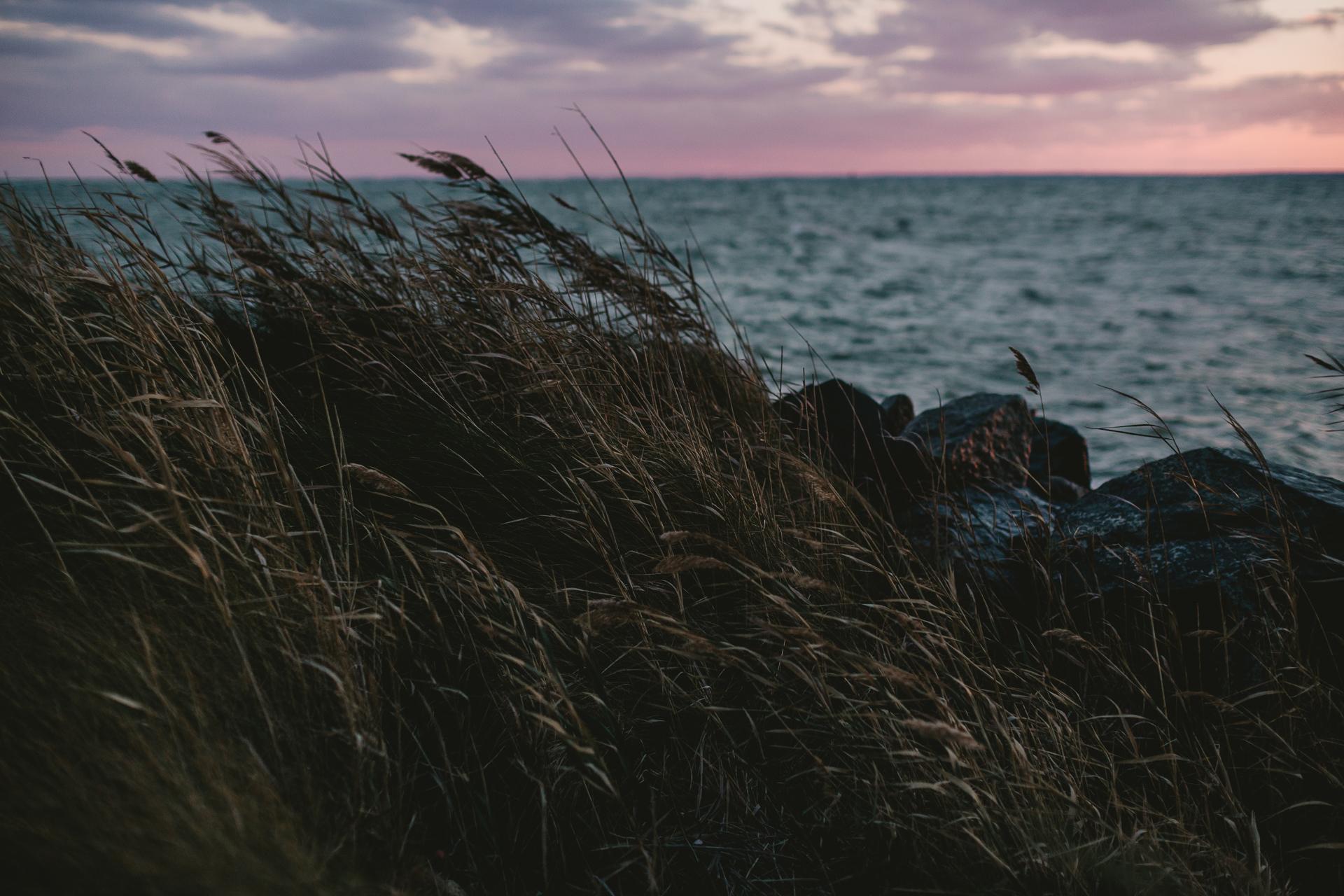 jess-hunter-tilghman-island-wedding-photographer-8432.jpg