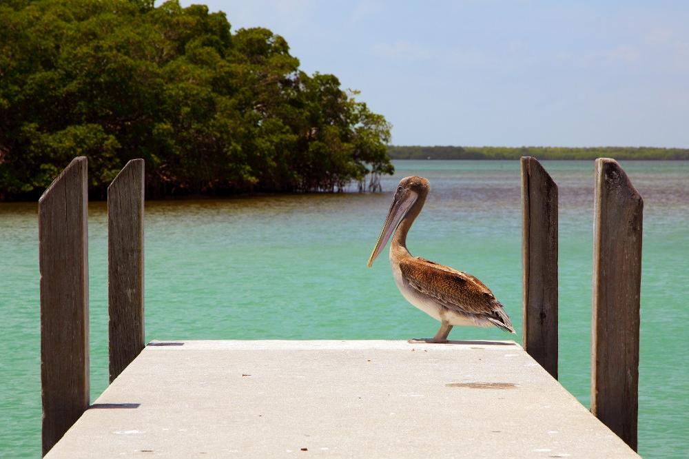 Crandon Beach, courtesy of Greater Miami Convention & Visitors Bureau