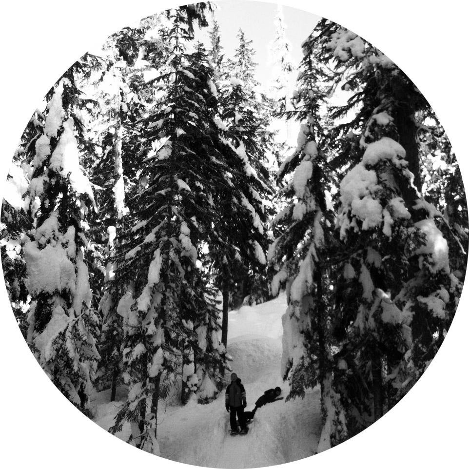 Whistler5.jpg