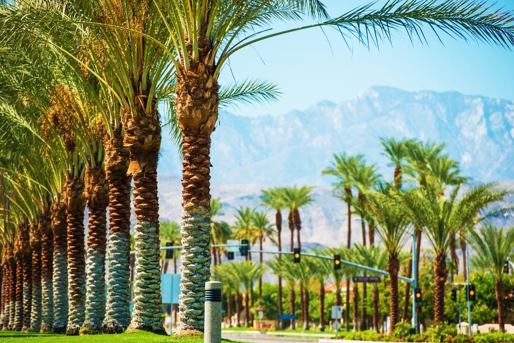 Palm Springs generic.jpg
