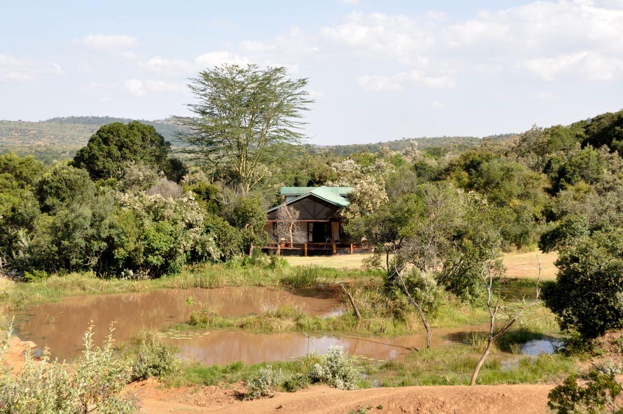 Acacia-House-watering-hole-LR.jpg