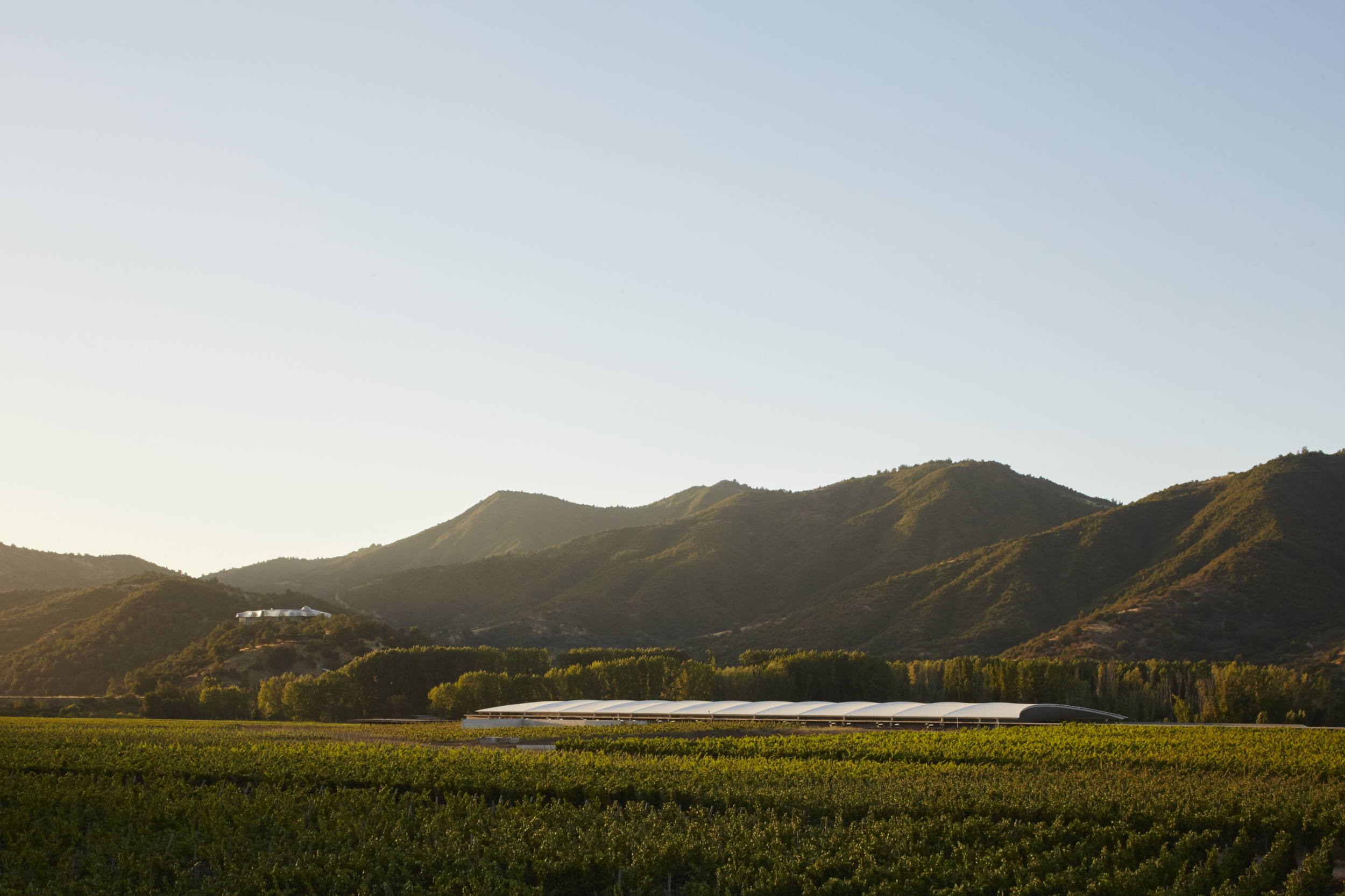 Vina Vik & The Winery from afar.jpg