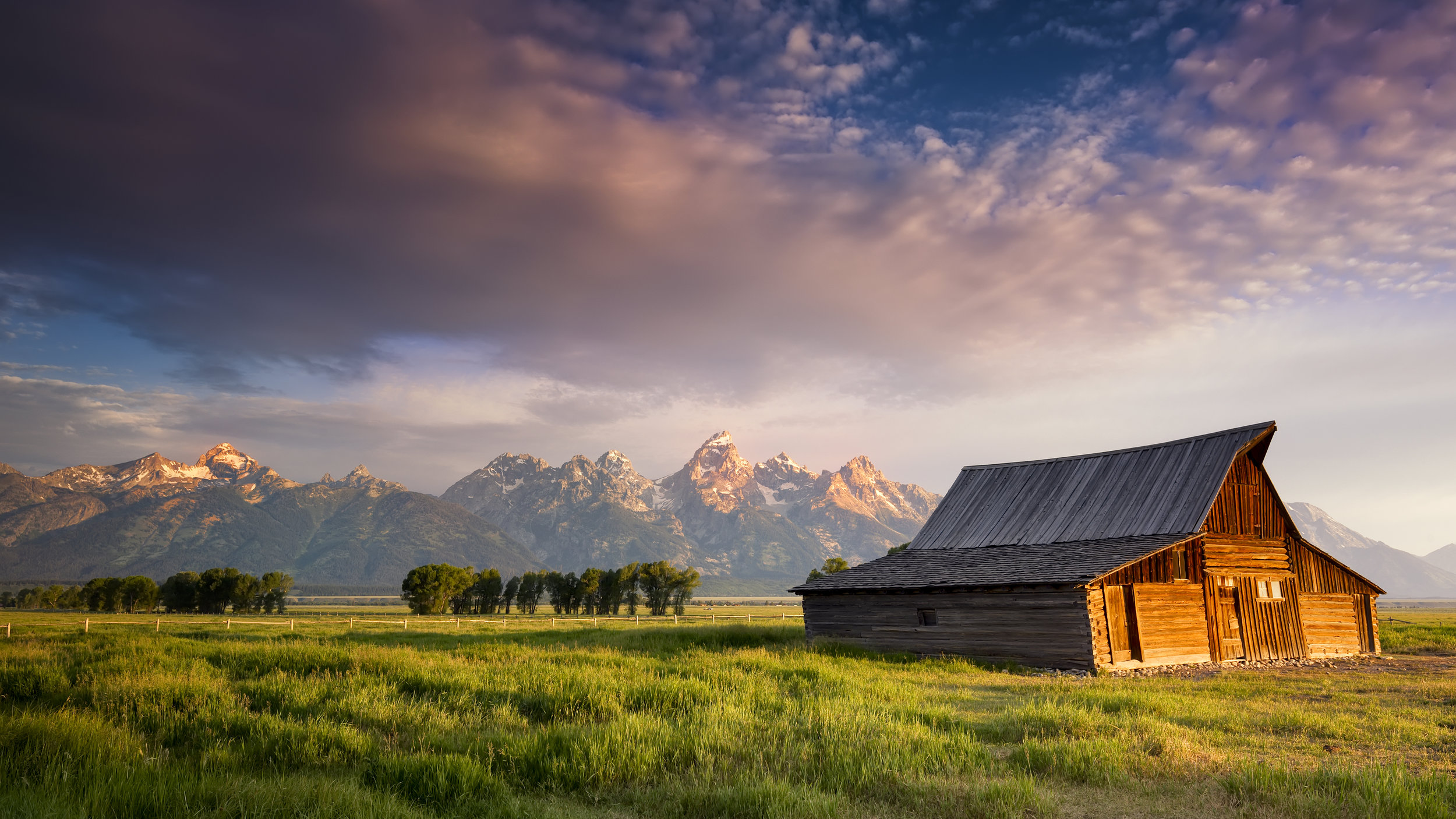 Photo by Dean Fikar/Shutterstock