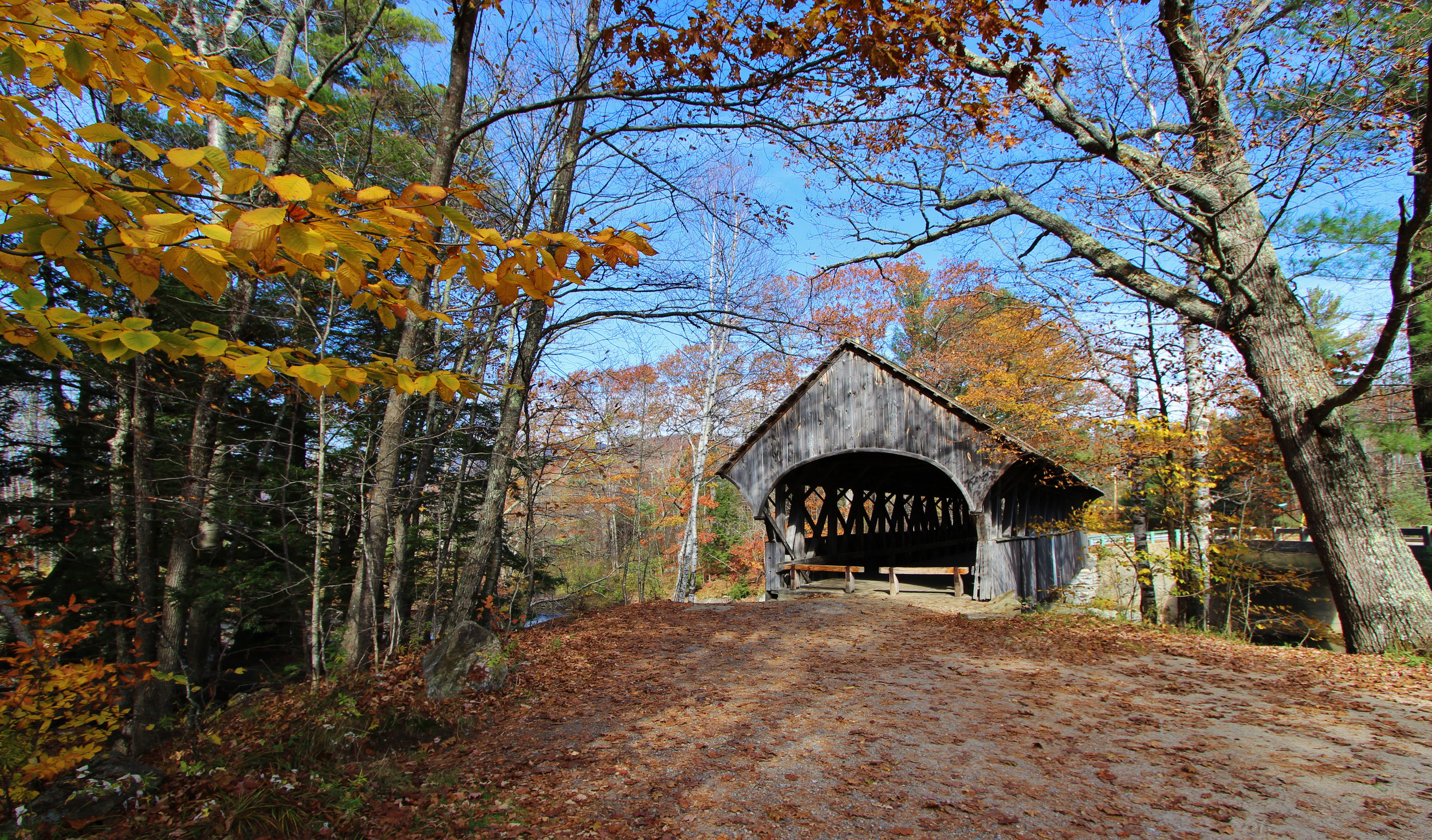 Maine Covered Bridge.jpg