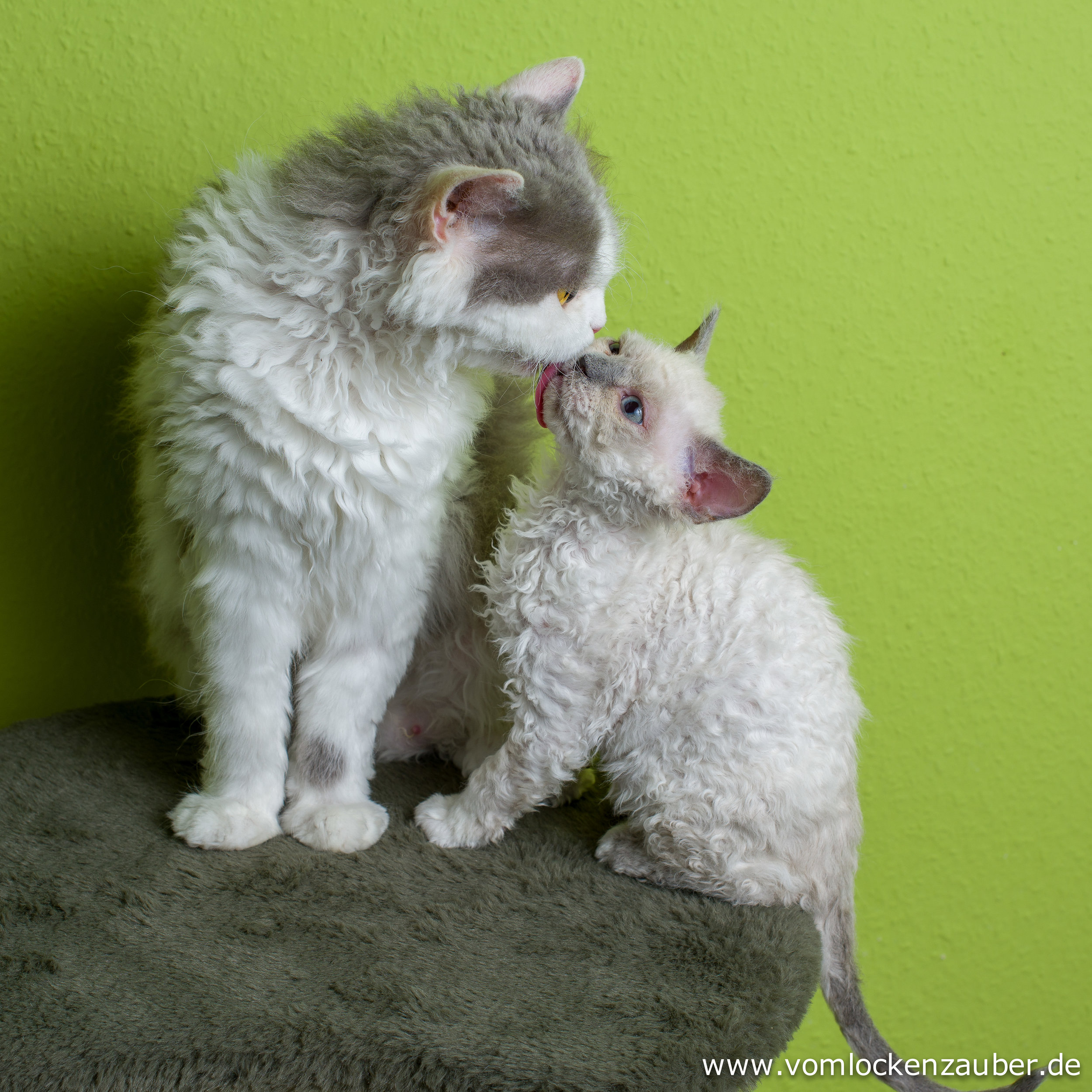 Eddy mit Mama Roxana