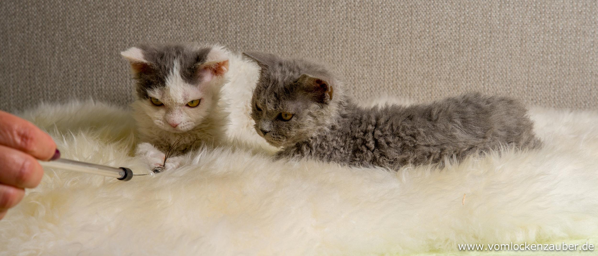 Greta und Gina