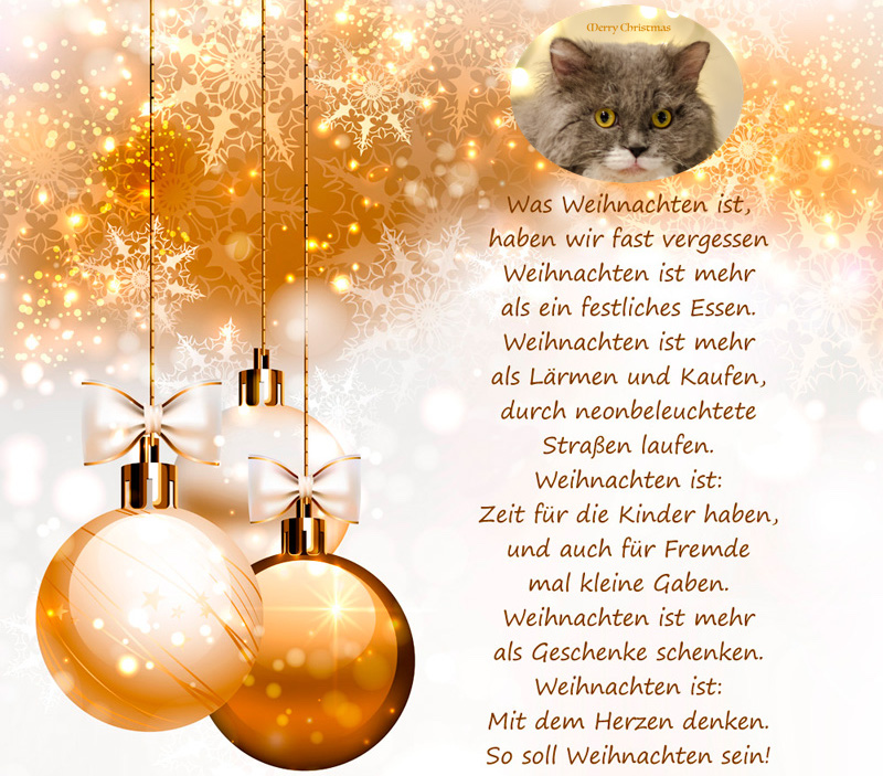 weihnachtsgruesse-2018.jpg