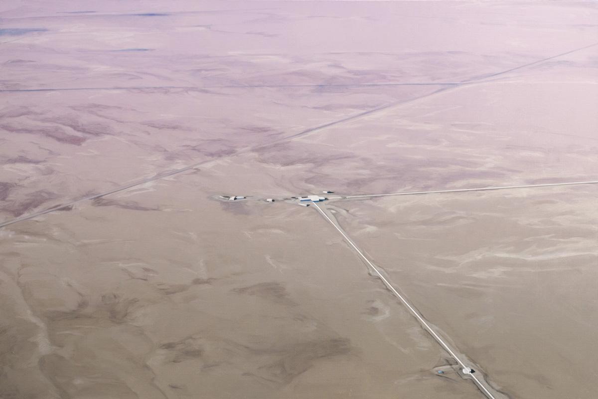 LIGO Pink and Tan Fade