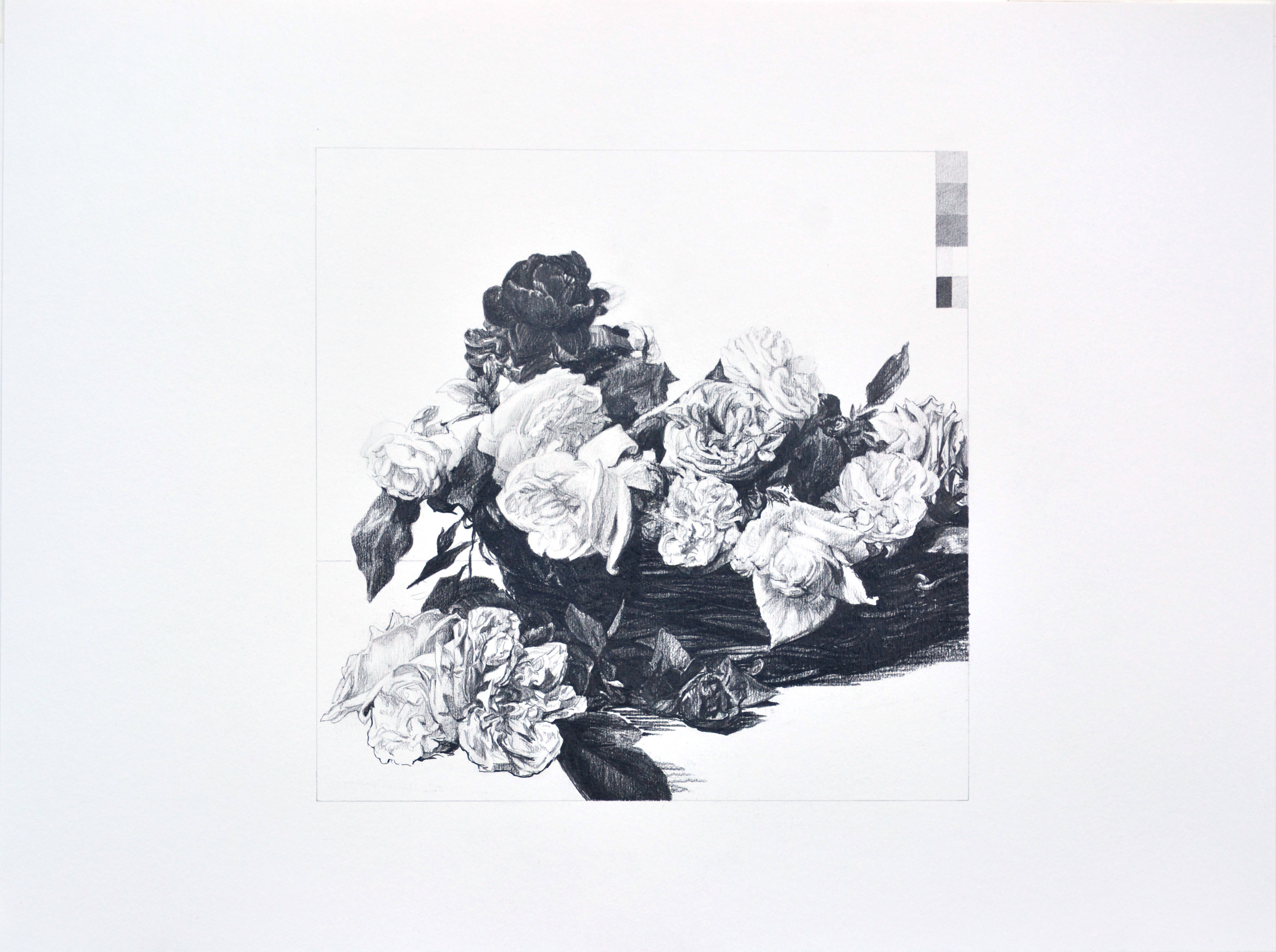 Power Corruption and Lies #24