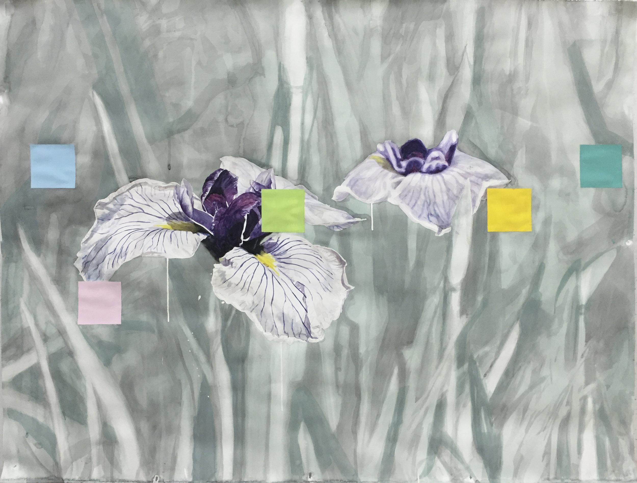 Double Negative (Irises)