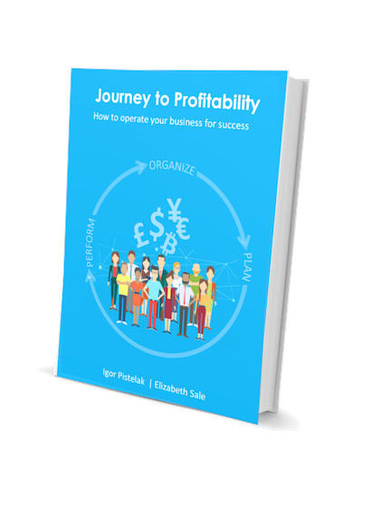 The Journey to Profitability