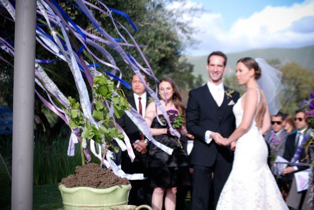 LaurylLane_California_Wedding_Purple_20