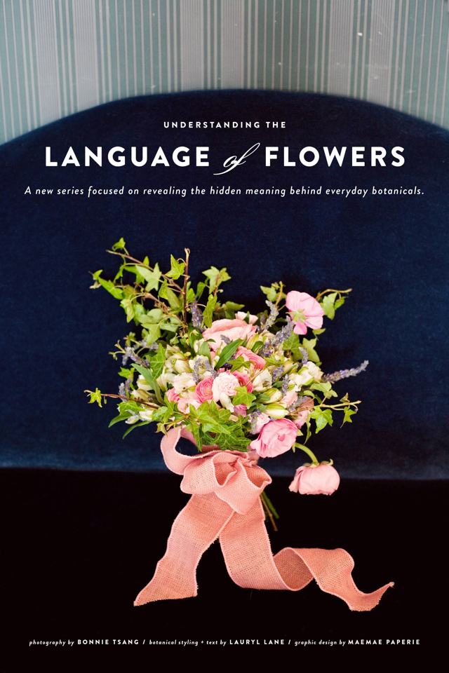 LaurylLane-LanguageofFlowers-01
