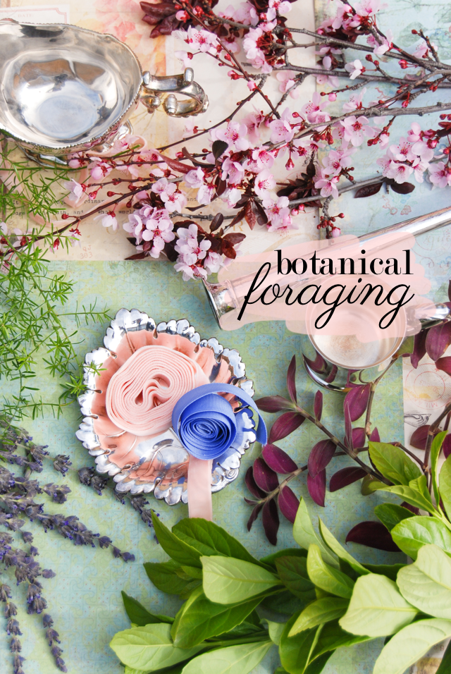 LaurylLane-BotanicalForaging-01