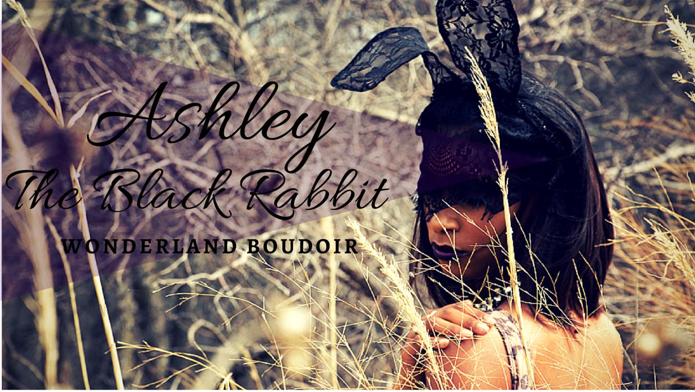 Wonderland Boudoir Dallas Black Rabbit