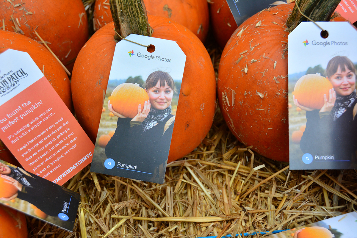"""Hangtags on pumpkins informed visitors that finding the perfect pumpkin is easy with a simple """"pumpkin"""" search on Google Photos."""