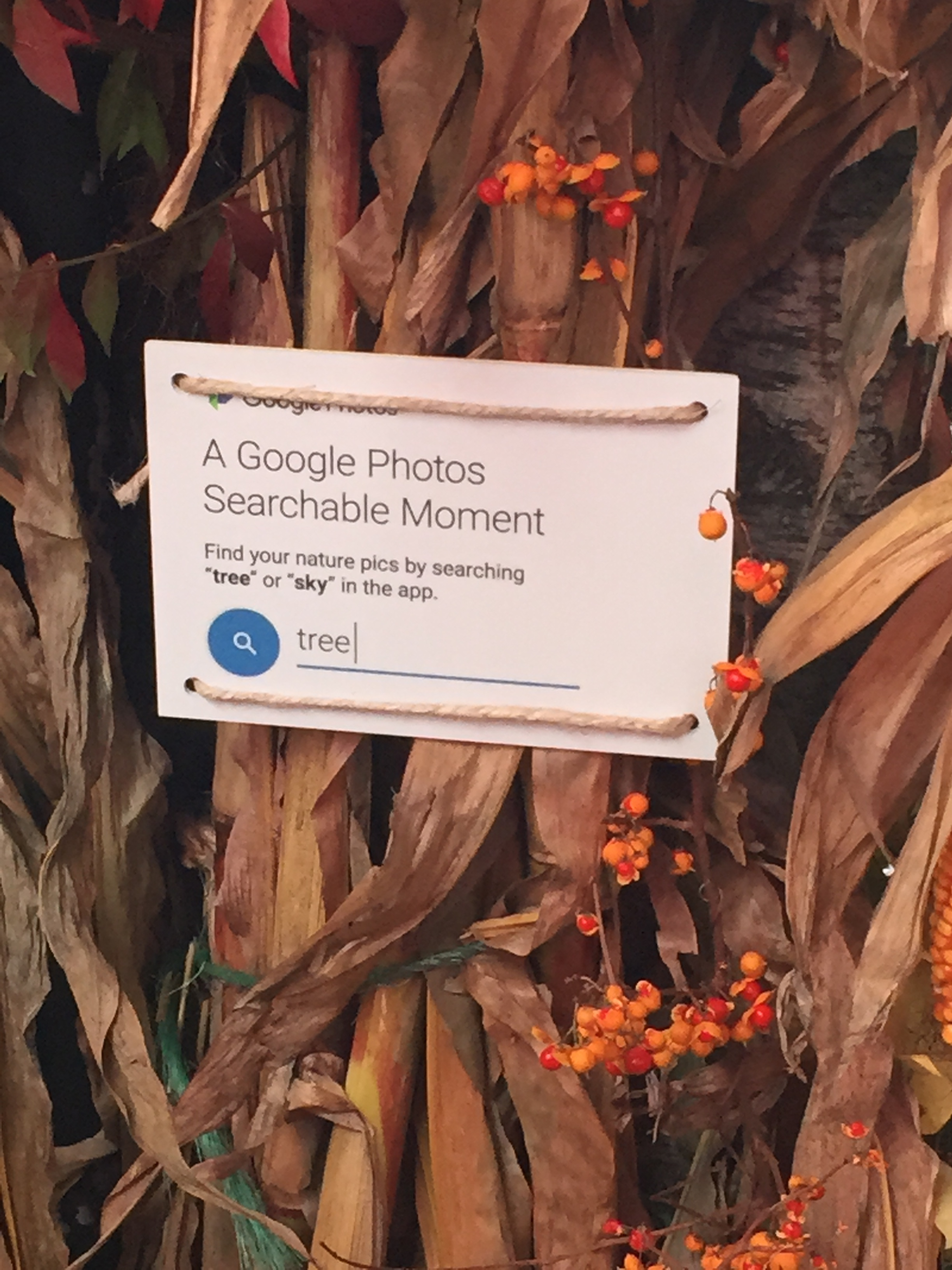 """We created """"Searchable Moments"""" around the event, encouraging visitors to snap pics, then search for them on Google Photos using suggested keywords."""