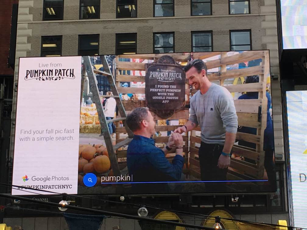 """These guys got engaged! I don't think they understood the CTA. But they will always be able to find their engagement photo by searching """"pumpkin."""""""
