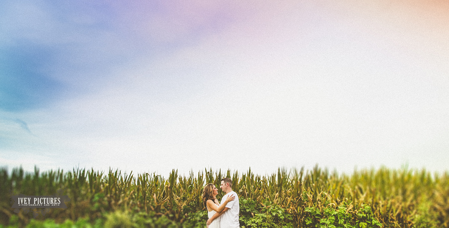 engagement session in field photo