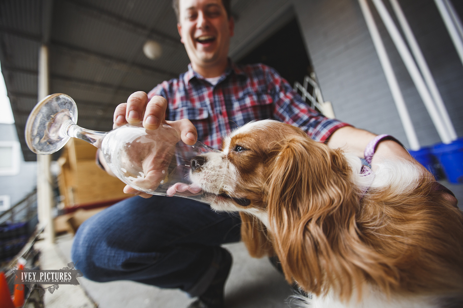 puppy loves beer intuition brewery engagement session