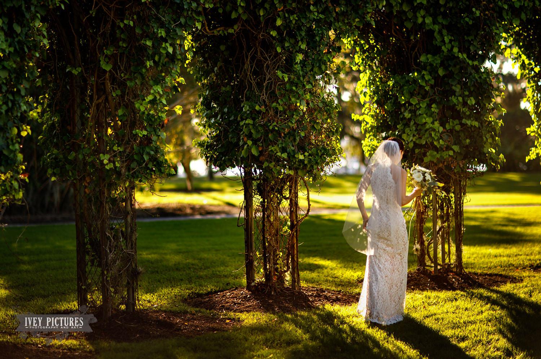 The Crane Cottage Wedding Photographer.jpg