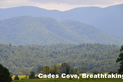 Cades Cove Loop - The Smokies