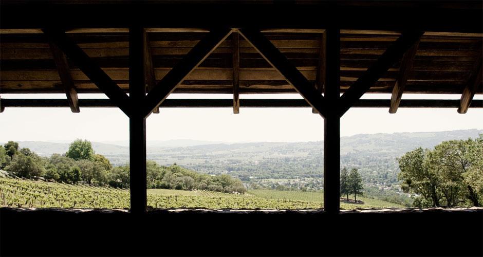 sonoma valley.jpg
